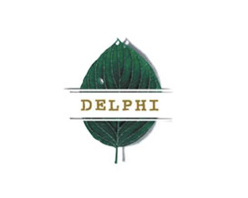 clientes__0042_Delphi